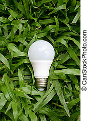 LED bulb - Energy and green nature