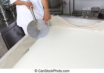 Cheese production creamery dairy worker coagulation - A...