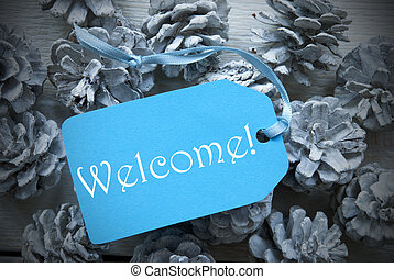 Light Blue Label On Fir Cones With Welcome