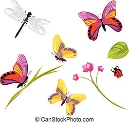 Insects isolated on a white background Vector illustration