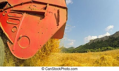 Fresh Mown Hay Falling Out Of Combine - CLOSE UP: Fresh mown...