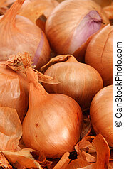 Shallots - Close-up of shallots