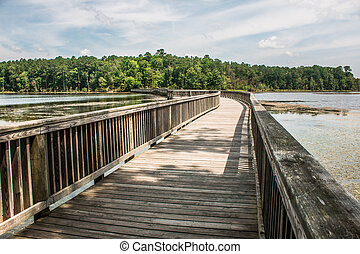 Long Bridge to Forest - A long bridge over a river and...