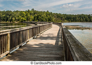 Long footbridge to forest - A long footbridge which curves...