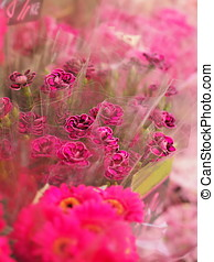 Flower market - bunch of pink carnations.