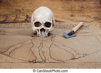 Human Skull on Old map Background