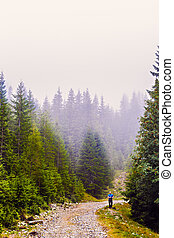 man on a mountain road in the fog