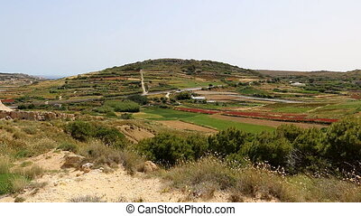Malta island rural landscape - Hilly landscape of colourful...