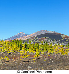 Pico Viejo and El Teide, El Teide National Park, Tenerife,...
