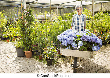 A day in a green house - Beautiful mature woman gardening...