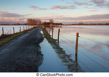 Road to a Dutch farm flooded by water from the river IJssel...