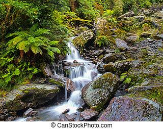 Waterfall in New zealand rain forest
