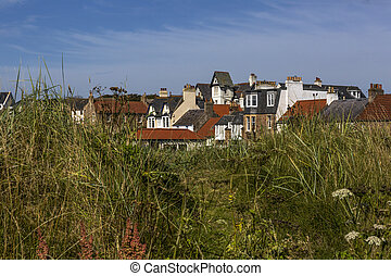 Houses through tall grass in Elie Scotland
