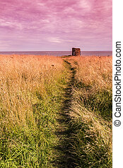 Old ruined Castle in Elie Scotland - Shot of an old ruined...