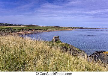Elie coastline - Elie Coastline in the Kingdom of Fife,...