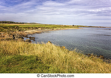 Pretty coastline - Shot of a pretty coastline in Fife...