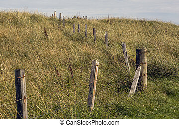 Country Fence in Elie Beach, fife, Scotland