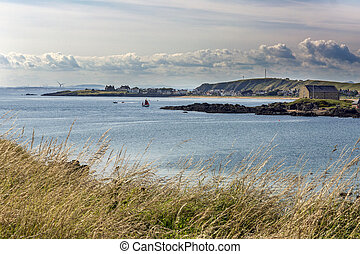 Elie coast through grass - pretty sunset shot over Elie...