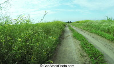 Road among wildflowers - Steadicam camera on on road among...