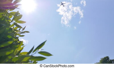 Blue and sunny sky with a plane moving - View from the...