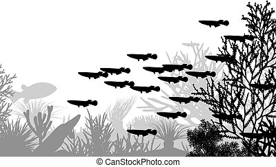 Underwater life - Vector illustration of coral and fish...