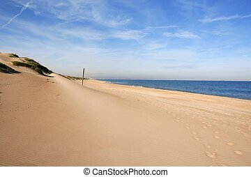 Dune on mediterranean sea coastline in Valencia Spain