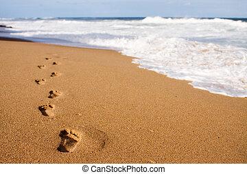 pegadas, guiando, mar