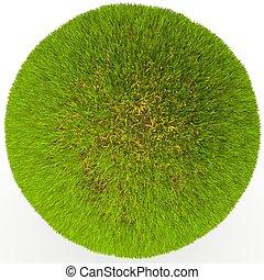 Green grass ball.