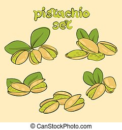 pistachio - vector set of pistachio nuts in different forms