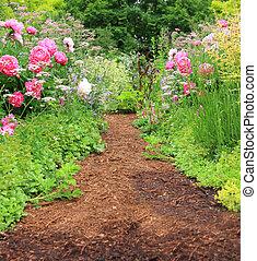 Garden path - Pretty path in an english cottage garden.