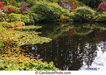 Quiet pond on Vancouver Island