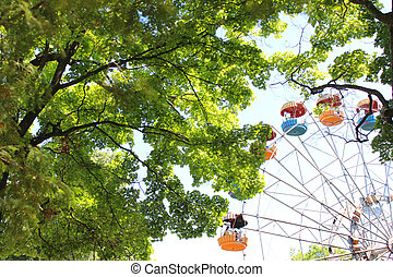 ferris wheel in the park with trees