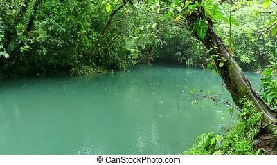 River Stream Lagoon Rainforest - Rio Celeste (Blue River) in...