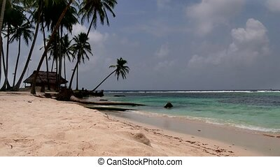 Sea Ocean Beach Paradise Palm Trees - Isla Aguja,...