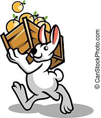Rabbit Orange Fruit - White rabbit bring orange fruit
