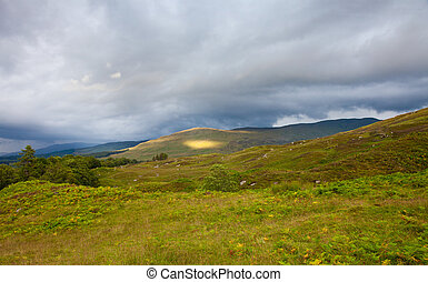 scotland, summer lanscape