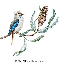 Australian kookaburra bird - Beautiful vector image with...