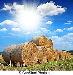 Straw bales on farmland with sunny sky