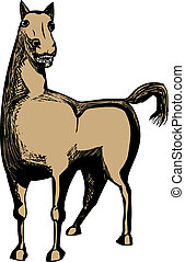 Single Brown Horse - Single illustration of brown horse over...