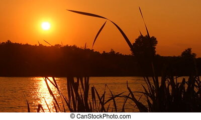 Sunset on the lake - the glare of the setting sun on the...