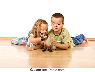 Kids playing with their new kitten - Kids laying on the...