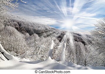 sun beam over the forest - mountain panorama with sun beam