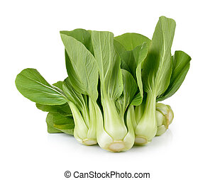 Bok choy vegetable on white background