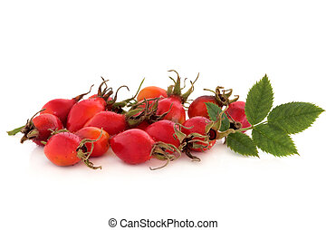 Rose Hip Wild Fruit - Rose hip fruit with leaf sprigs,...
