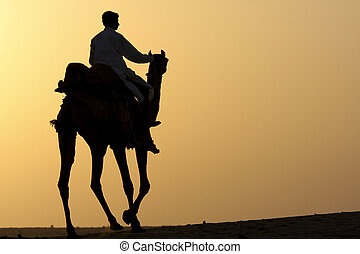 Camel rider silhouette - Silhouette of a camel rider in the...