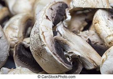 Agaricus Mushroom Close Up and cut in half.