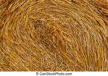 Background from wheat straw in roll