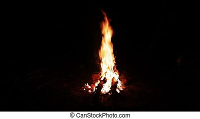 Bonfire night in the woods, and red-hot coal on the ground...