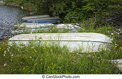 Old Rowboats - A group of old row boats by the waters edge...