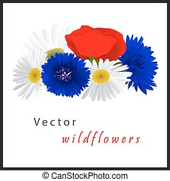 Vector white background with chamomile, cornflowers and...